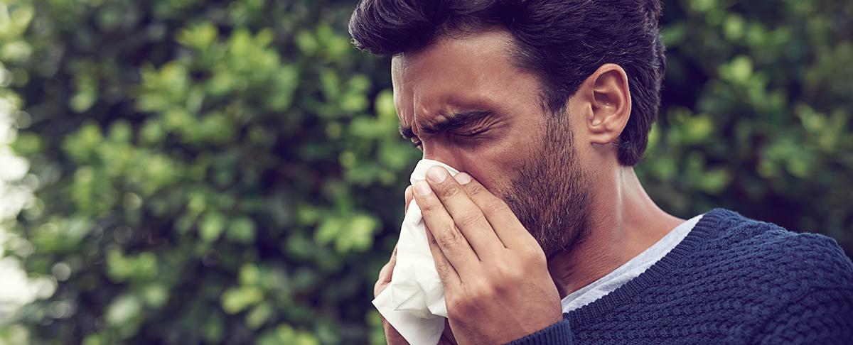 Alergia na pyłki: 5 drzew, które mogą uczulać