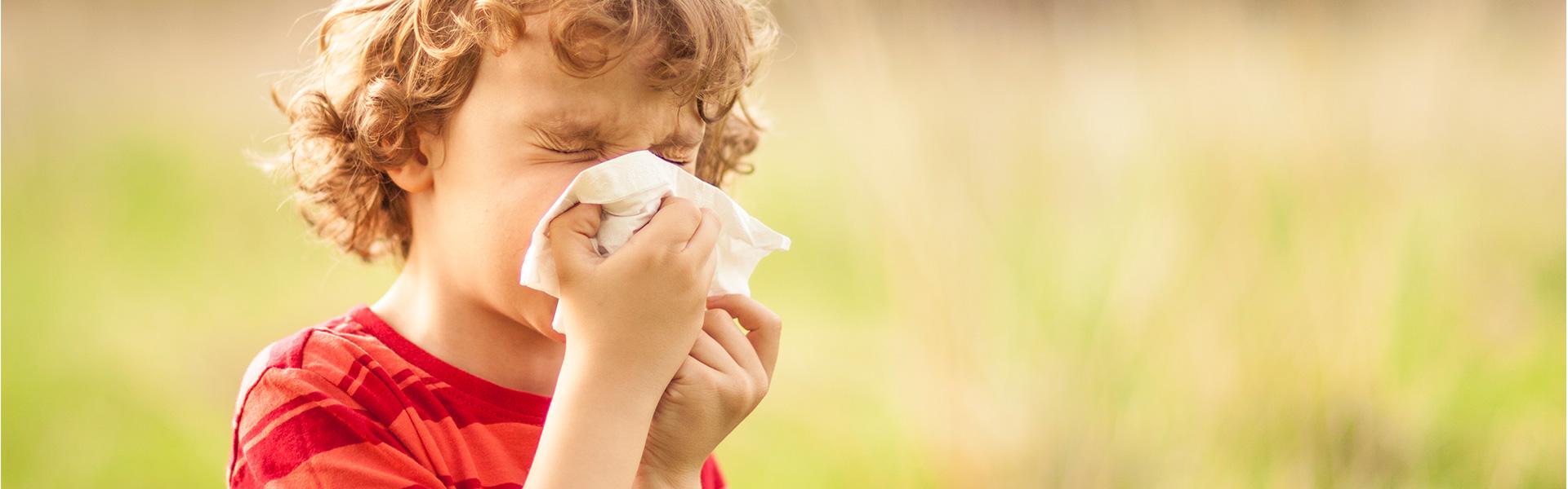 Na zdrowie, czyli wszystko to, co powinieneś wiedzieć o alergicznym nieżycie nosa