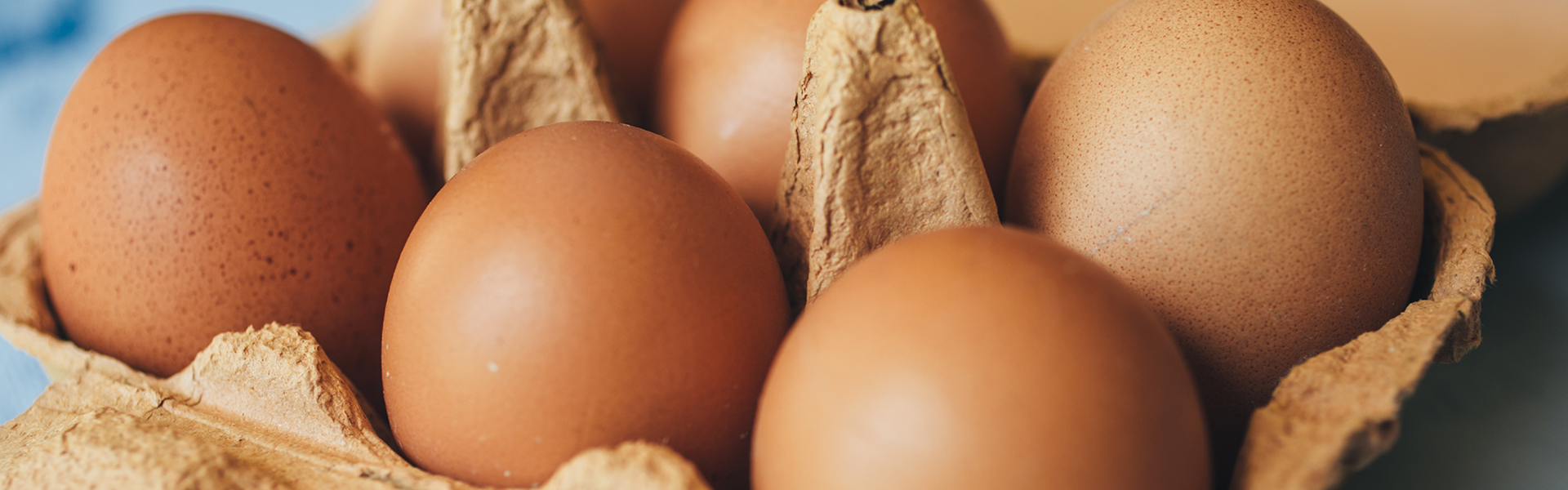 Alergia na białko jaja kurzego